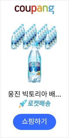 웅진 빅토리아 배 탄산음료, 20개입, 500ml