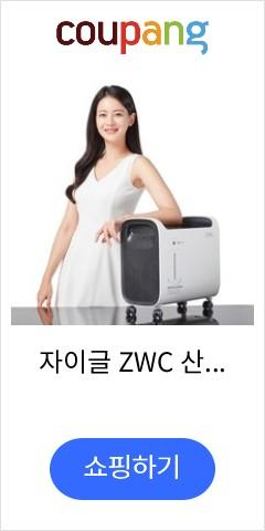 자이글 ZWC 산소발생기 숲속 ZOC-A1001 이미용가전, 블랙앤화이트, ZWC 뷰티산소발생기 숲속