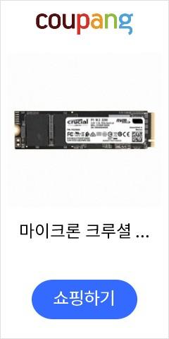 마이크론 크루셜 P1 M.2 2280 SSD (1TB M.2) 대원CTS, 1TB, 선택하세요