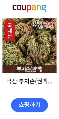 국산 부처손(권백) 600g, 1개
