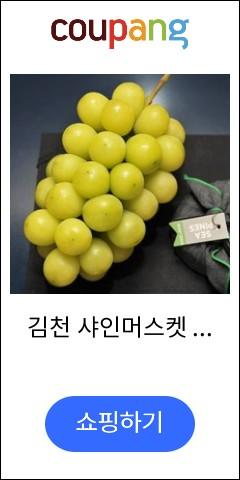 김천 샤인머스켓 2...