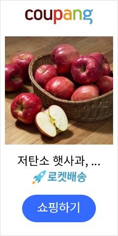 저탄소 햇사과, 3...