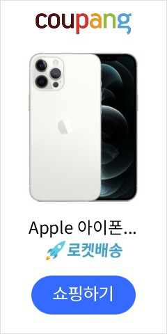 Apple 아이폰 12 Pro Max, 공기계, Silver, 256GB