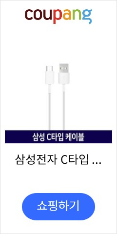 삼성전자 C타입 고속 충전 케이블 EP-DG930M, 화이트, 1개