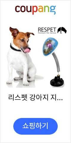 리스펫 강아지 지능...
