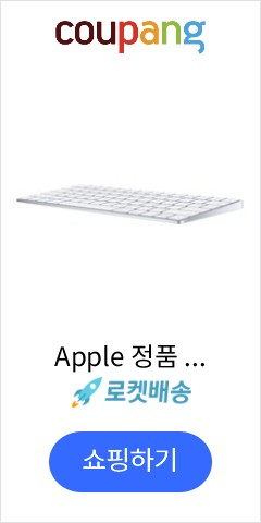 Apple 정품 매직 키보드 영어 미국, 텐키리스, MLA22KE/A, 화이트