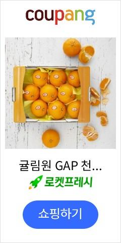 귤림원 GAP 천혜향, 2kg(8~10과 내외), 1박스