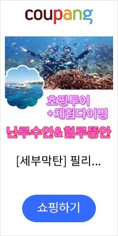 세부 난루수안+힐루뚱안 호핑투어+체험다이빙