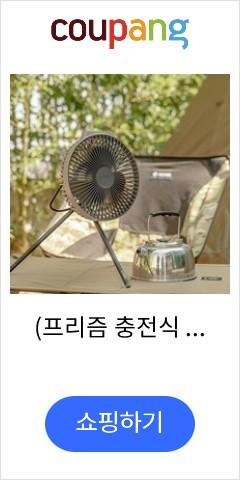 (프리즘 충전식 서큘레이터 선풍기 팬 FAN V600 충전식/선풍기/프리즘/서큘레이터