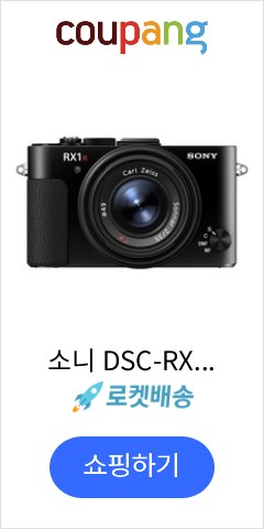 소니 DSC-RX1...
