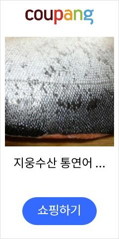 지웅수산 통연어 1...