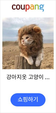 강아지옷 고양이 두건 사자 모자 웃긴 귀여운 애완동물 분장 의류와액세서리 머리장식 성탄 엽기 가을겨울 더우인앱 셀럽, C01-S목둘레 28CM3-7근 애완동물