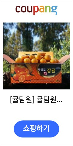 [귤담원] 귤담원 제주 제철 감귤, 1박스, 13.감귤 10kg 중대과(L/2L)