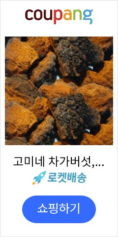 고미네 차가버섯, ...