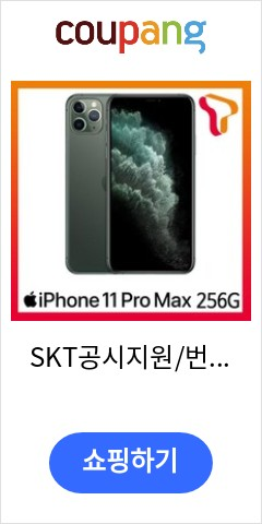 SKT공시지원/번호이동 아이폰11PM 256G 제휴혜택 T플랜 스페셜:골드, 색상, 모델명/품번