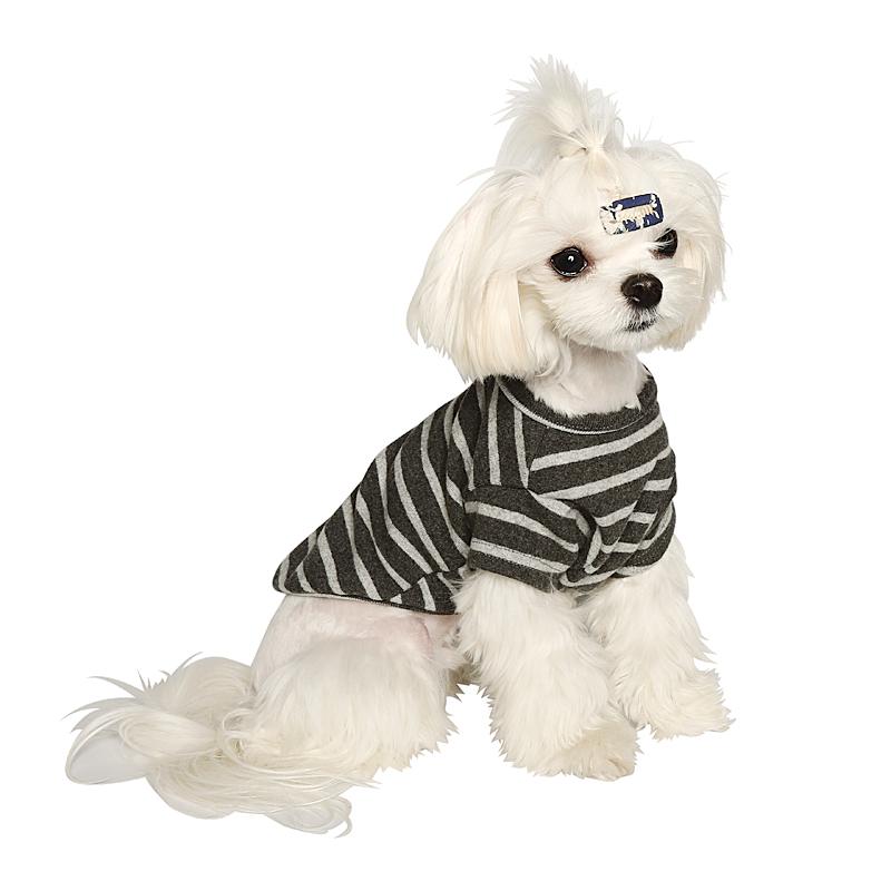 앙블리 강아지 소프트터치 티셔츠, 차콜 + 그레이