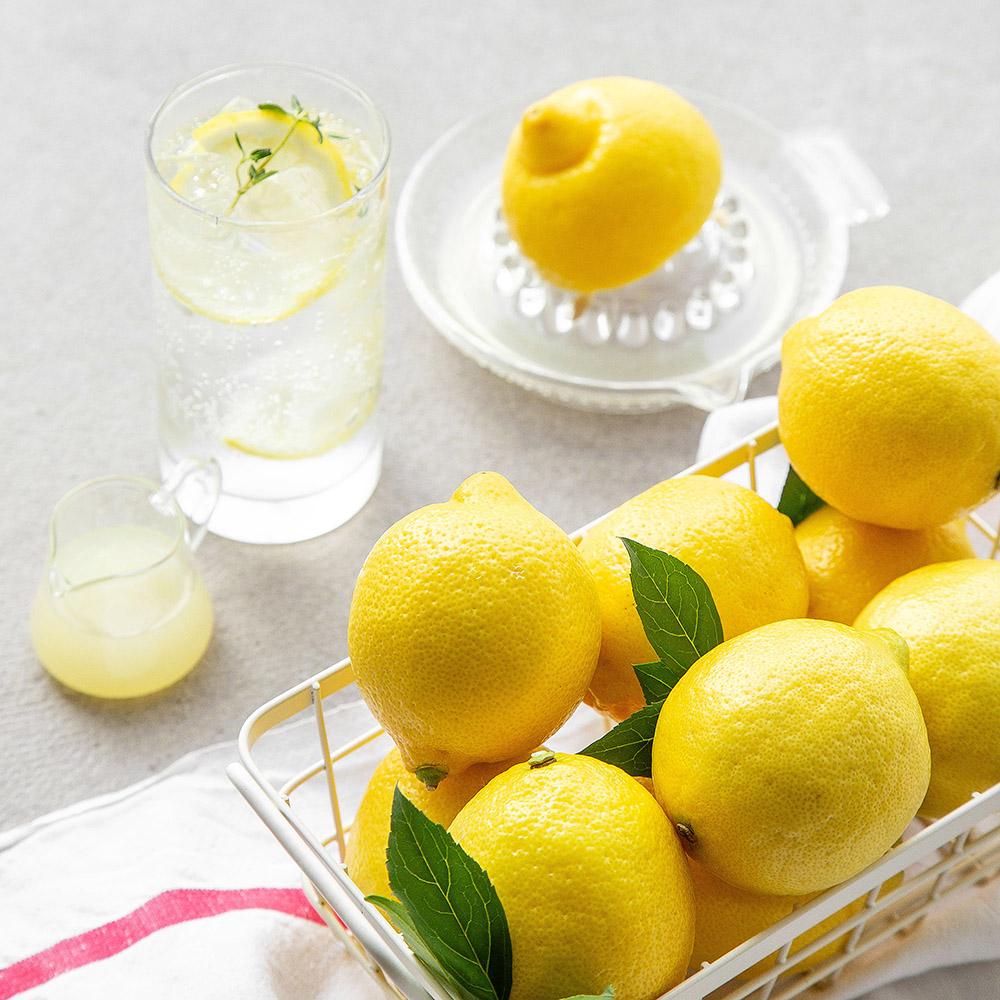레몬 대과, 1.2kg내외(9~11입), 1봉