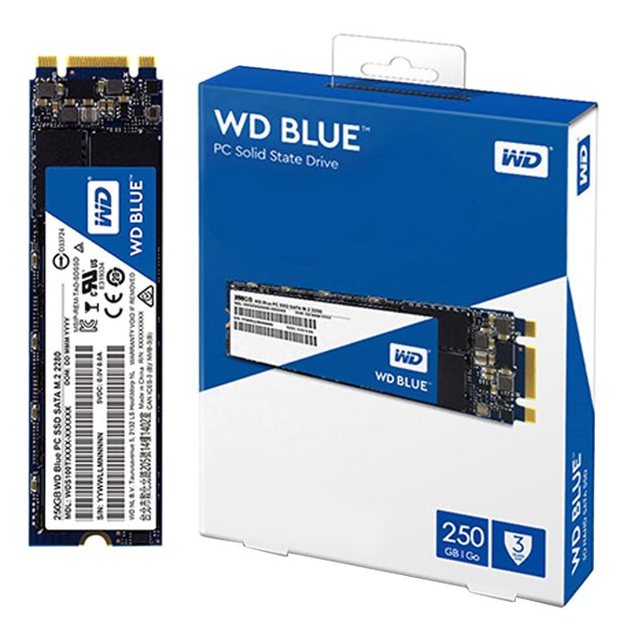 WD BLUE 3D NAND SATA SSD M.2 2280, WDS250G2B0B, 250GB