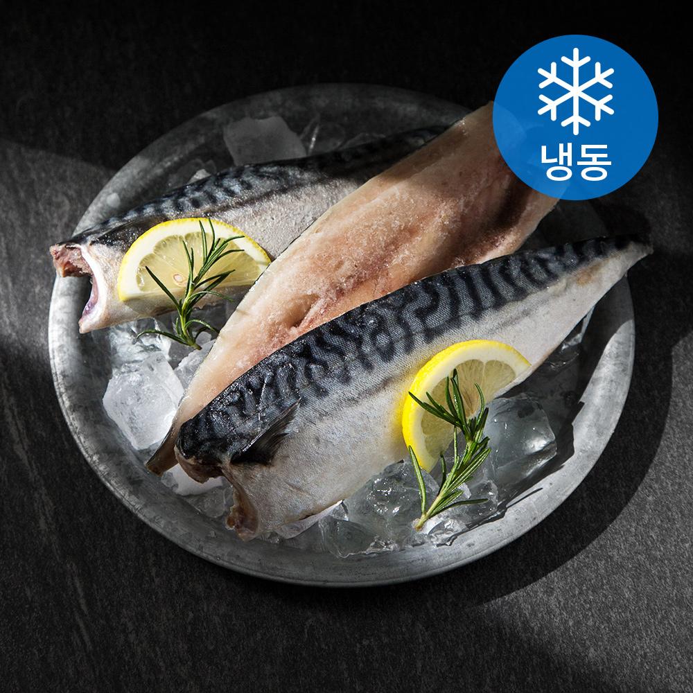 노르웨이 간고등어살 (냉동), 1kg, 1개