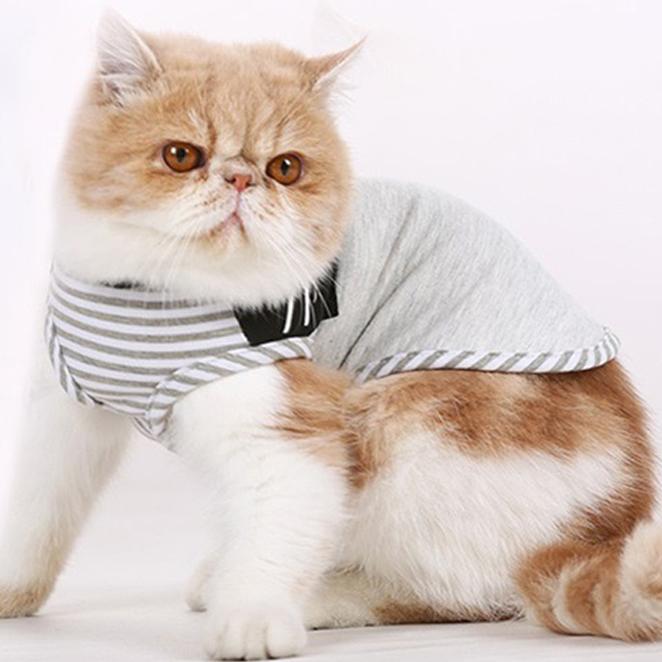 블럭마트 스트라이프 강아지 고양이 옷, 그레이
