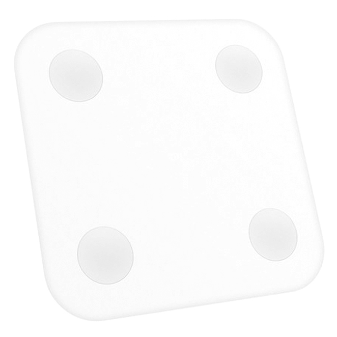 샤오미 미스케일2 체중계 XMTZC02, XMTZC02HM, 화이트