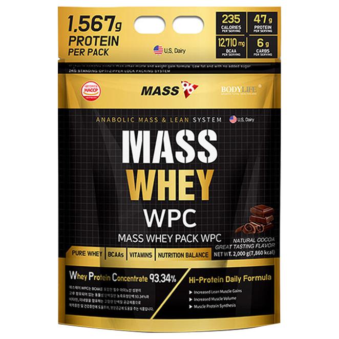 매스96 매스웨이 포대유청 WPC 보충제 초코맛, 2000g, 1개