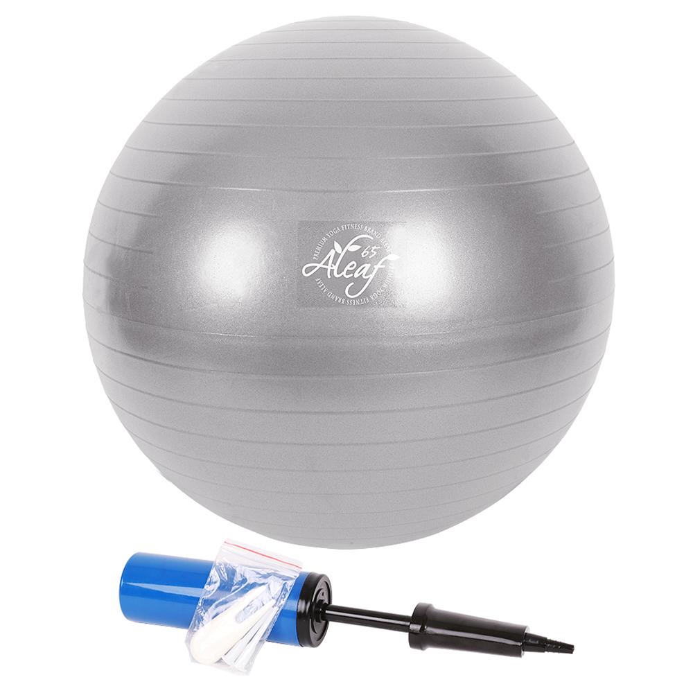 아리프 다이어트 짐볼 + 공기펌프 + 마개집게 + 마개 2p, 실버