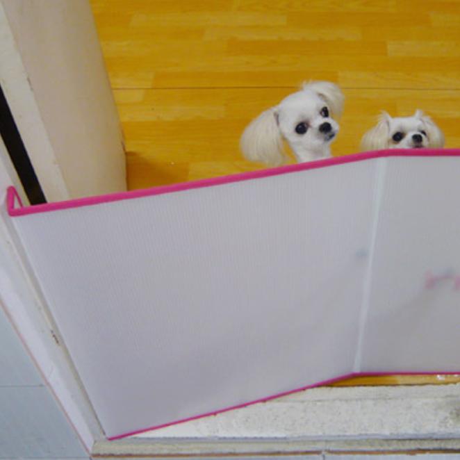 요기펫 소형견용 안전문 개벽, 반투명