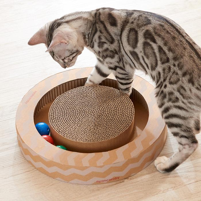 가리가리 플레이서클 고양이 장난감, 혼합 색상, 1개