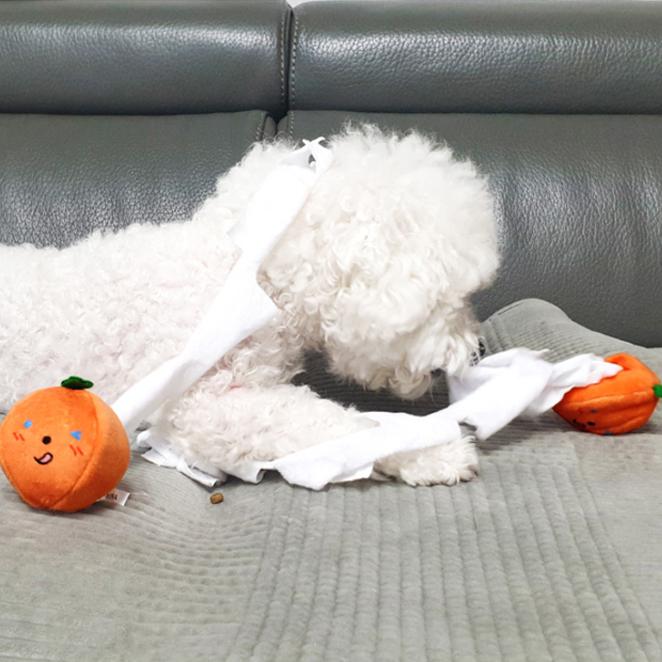 리스펫 강아지 노즈워크 호박 휴지 장난감 2종 세트 6 x 6 cm, 악마, 윙크, 1세트