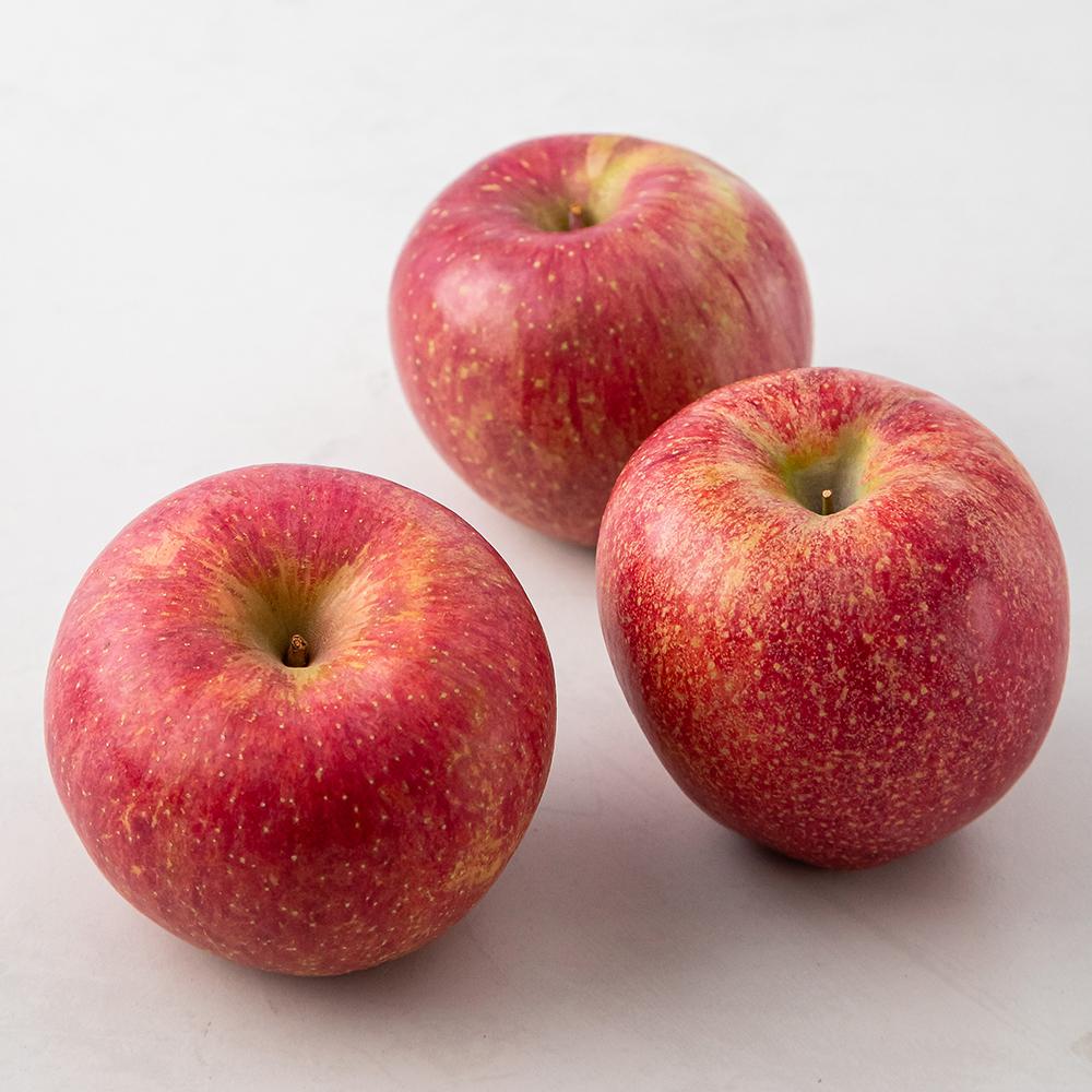 청송 당도선별 사과, 1kg(3입), 1팩
