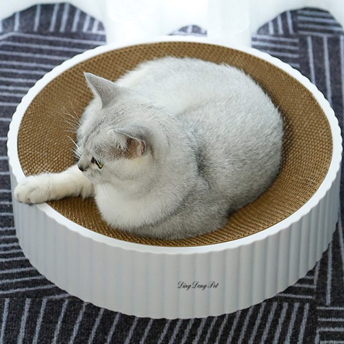 딩동펫 고양이 마루 평판형 스크래쳐 하우스, 혼합색상, 1개