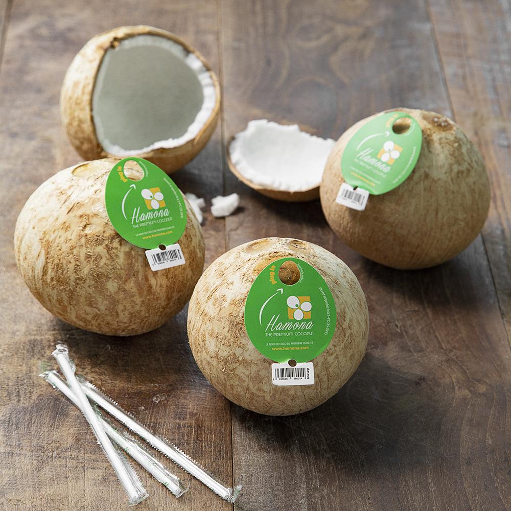 바로먹는 코코넛, 1.4kg(3입), 1팩