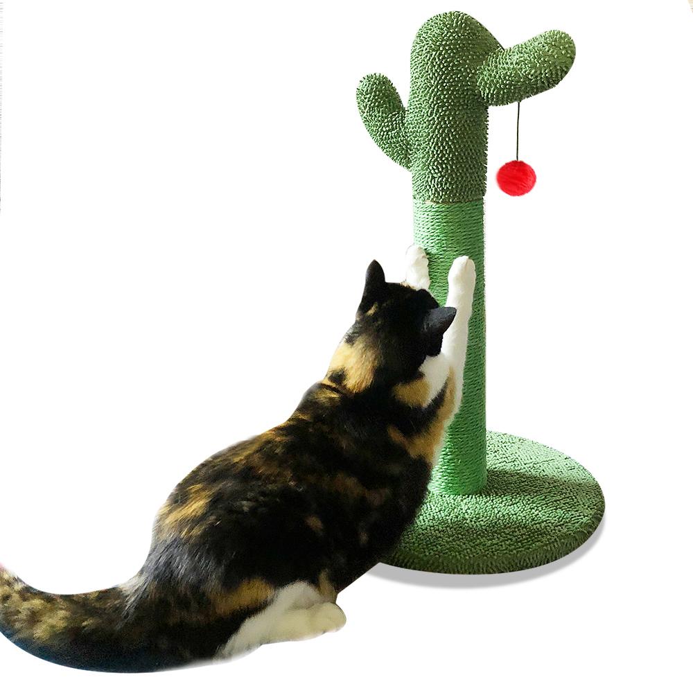 선인장 고양이 스크래쳐 폼폼볼, 1개
