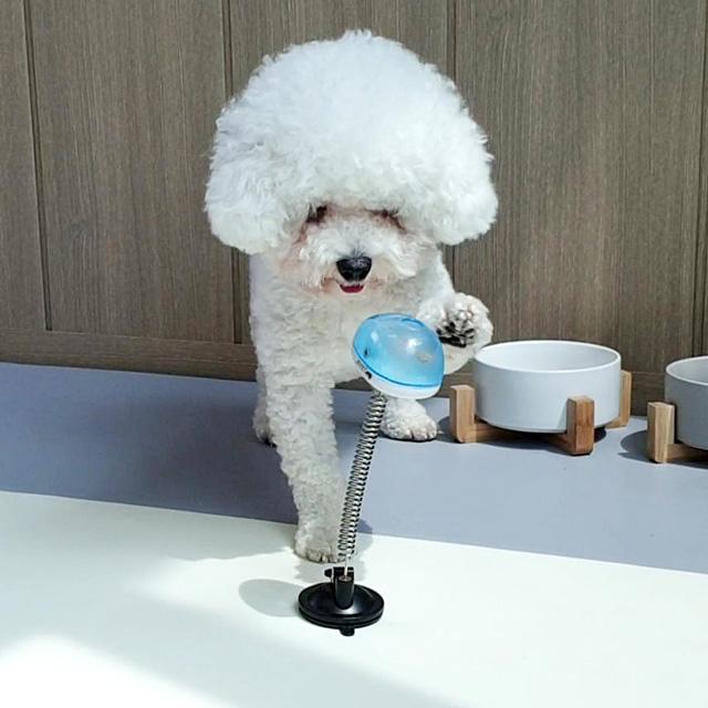 리스펫 강아지 톡톡 스프링 노즈워크 24 x 6.3 cm, 블루, 1개