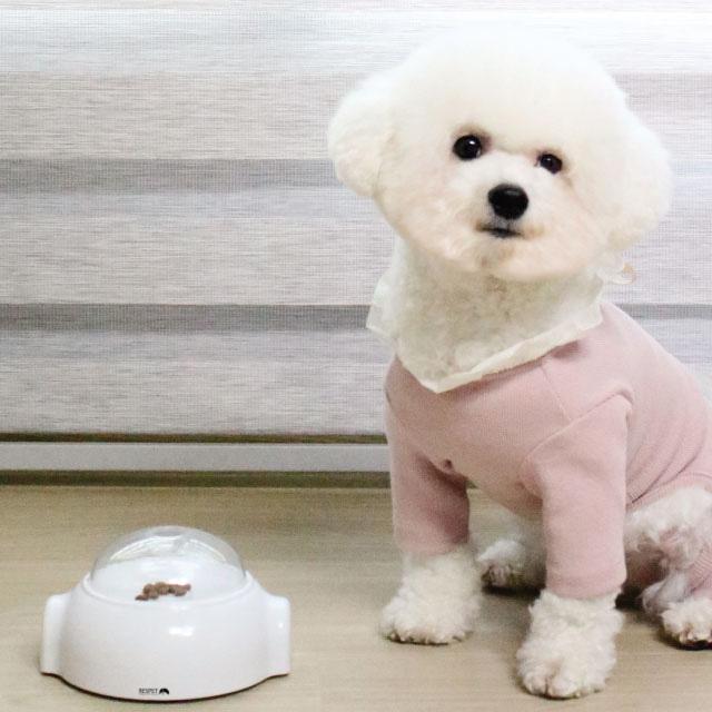 [반려동물용품] 리스펫 우주선 강아지 노즈워크 장난감, 화이트, 1개 - 랭킹56위 (10030원)
