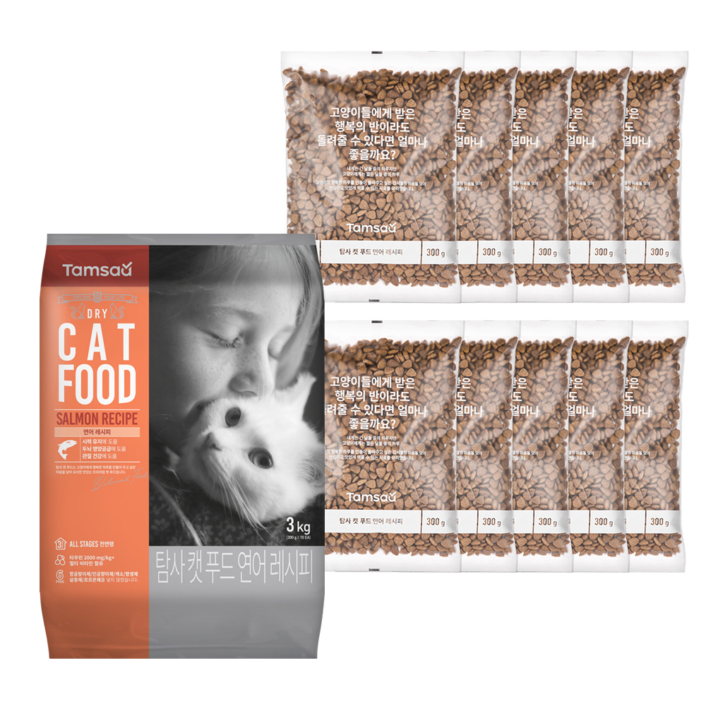 탐사6free고양이 사료 연어 레시피, 3kg, 1개