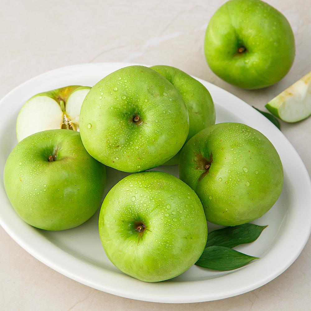 [아오이사과] GAP 아오리 사과, 1.5kg, 1봉 - 랭킹1위 (9900원)