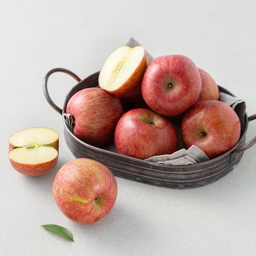 청송 당도선별 사과, 1.5kg(5~8입), 1봉