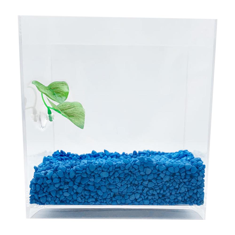 아쿠아테라 뉴탱크 베타어항 + 컬러스톤 500g + 베타침대, 플로워링 블루