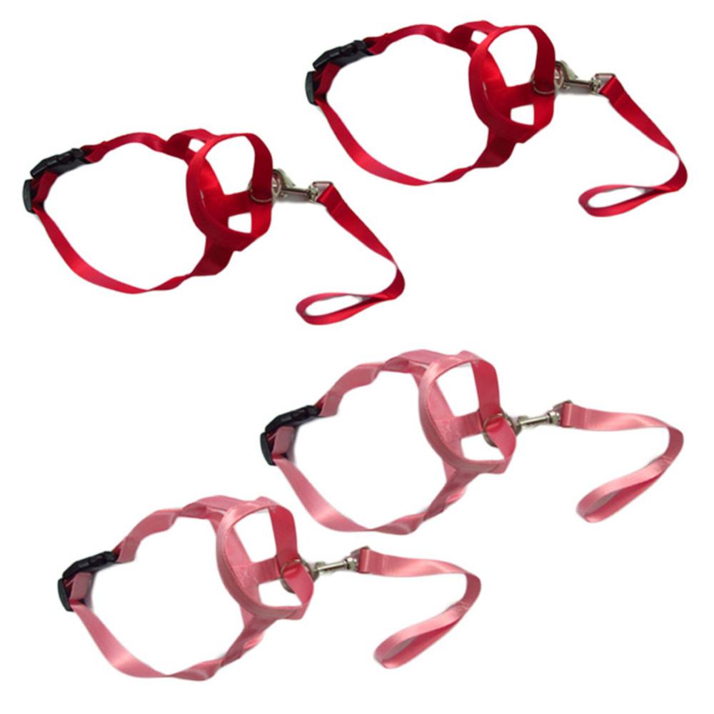 펫나인 강아지 나일론 심플 입마개 S 레드 2p + 핑크 2p, 혼합 색상, 1세트