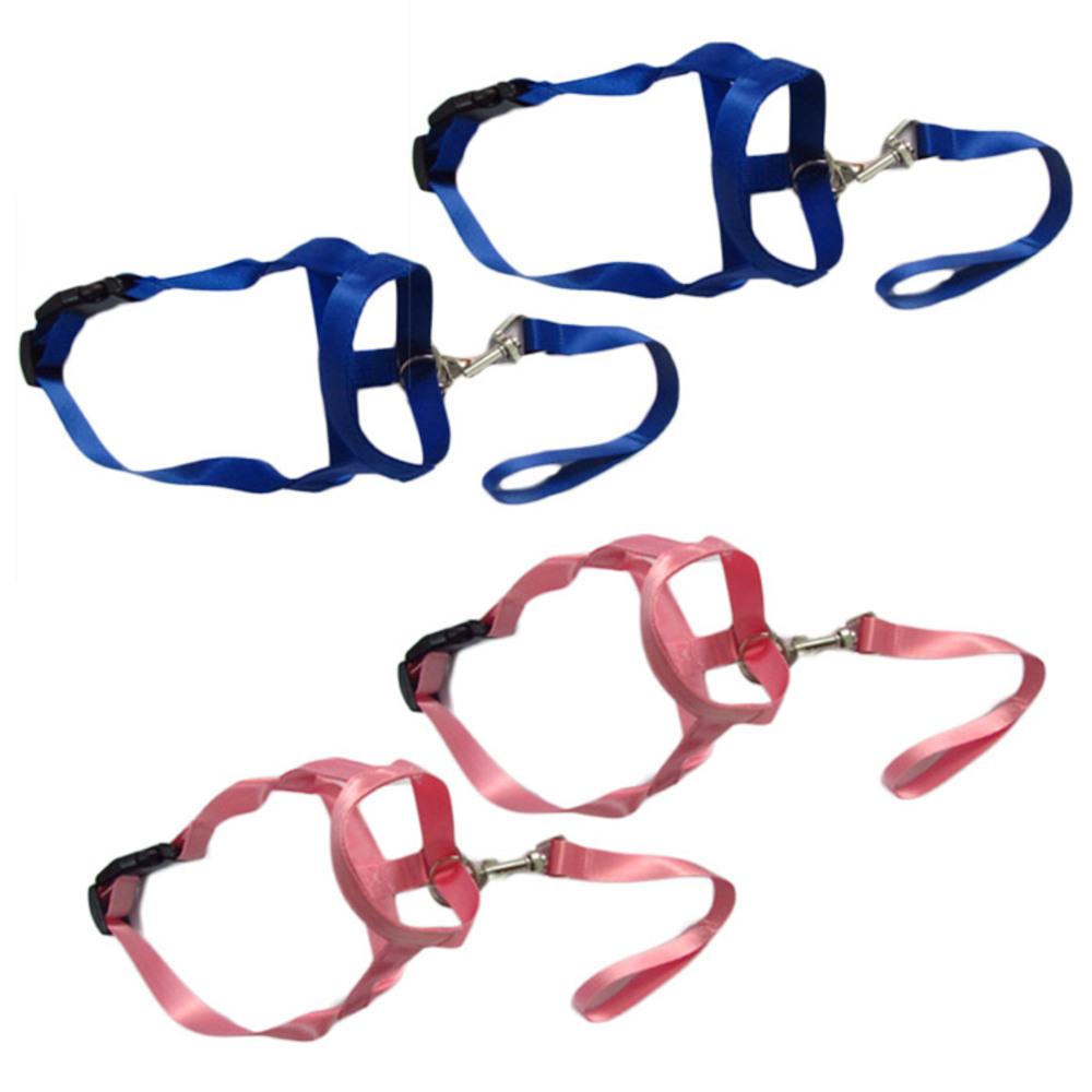 펫나인 강아지 나일론 심플 입마개 XL 블루 2p + 핑크 2p, 혼합 색상, 1세트