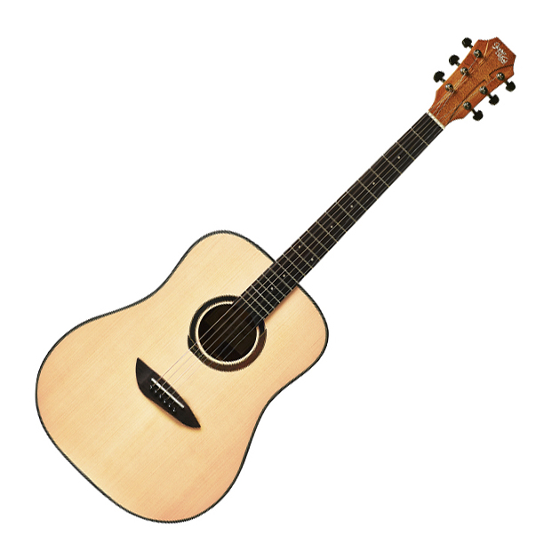 고퍼우드 어쿠스틱 기타 G100 NA, 혼합 색상