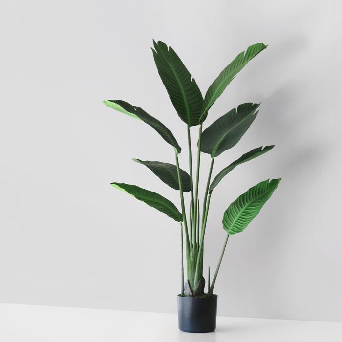 블루밍앤미 극락조 인테리어 나무 120cm, 혼합 색상, 1개