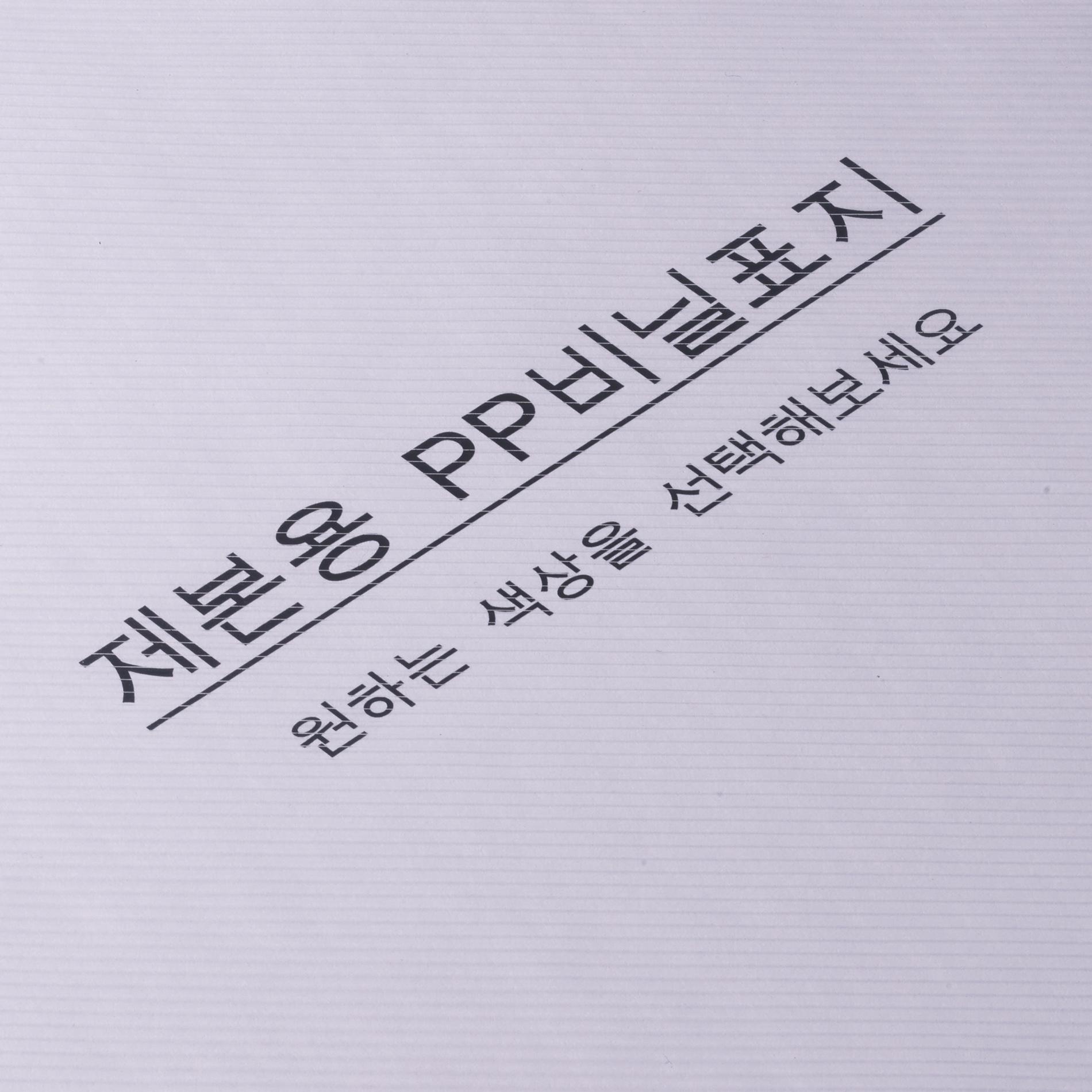 카피어랜드 PP 제본표지 0.5mm 100p, 사선투명, A4