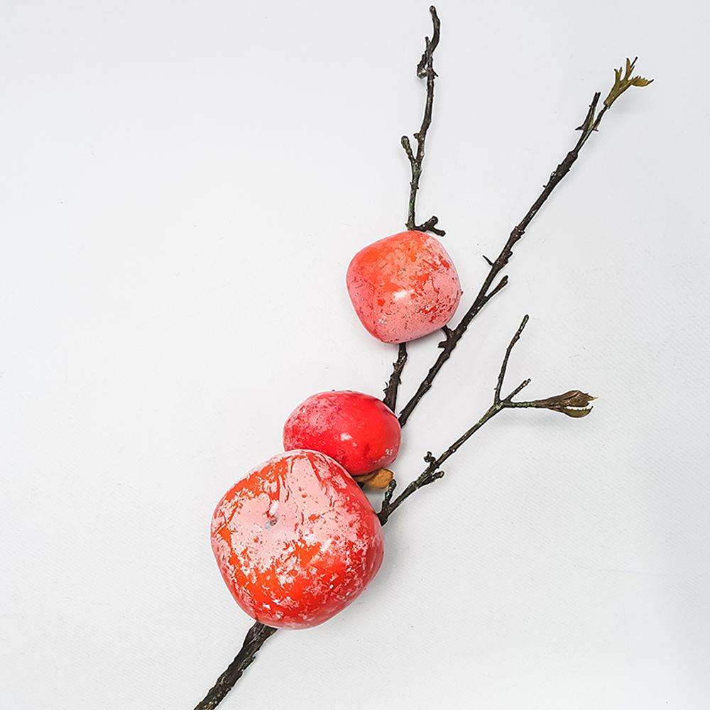 에이엘비 조화 가을 감나무 부쉬, 홍시감