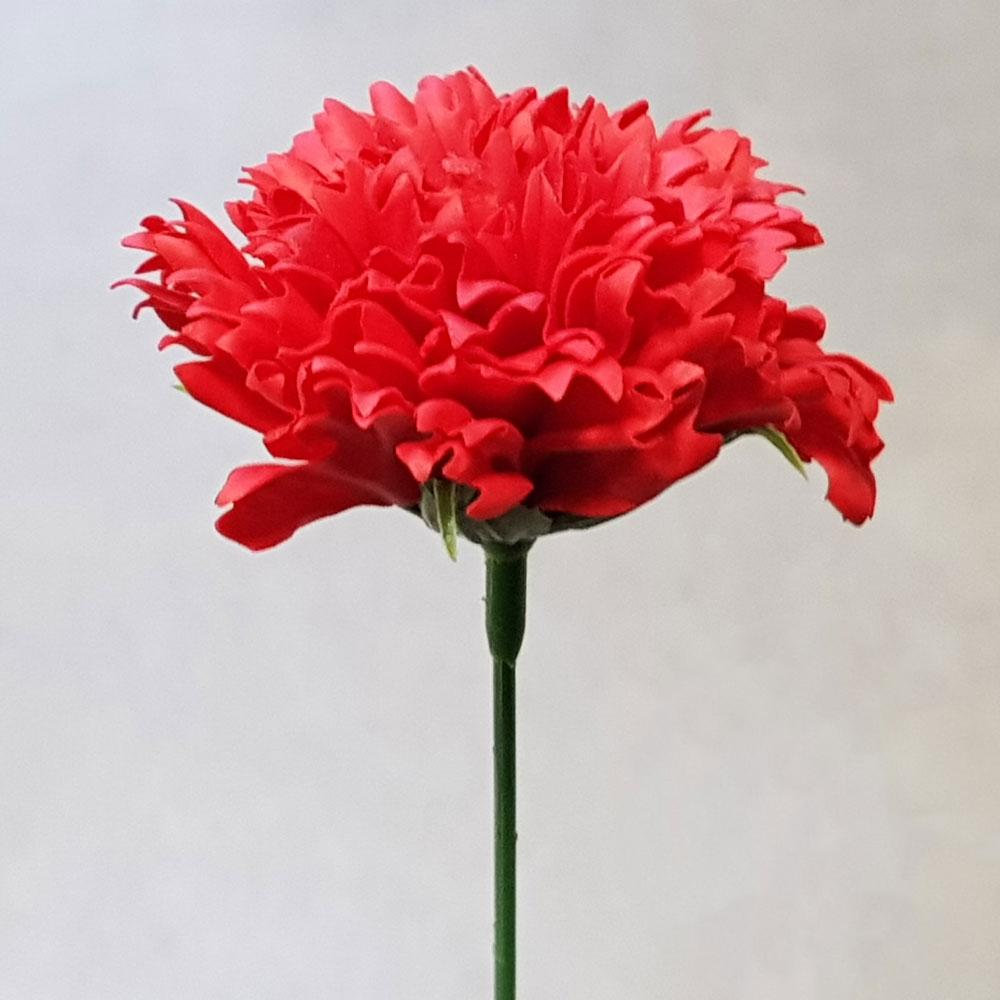 블랙앤화이트 비누꽃 카네이션 50p + 일반꽃대, 빨강