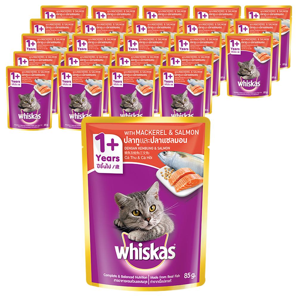 위스카스 고양이 주식 파우치 고등어와 연어, 85g, 24개입
