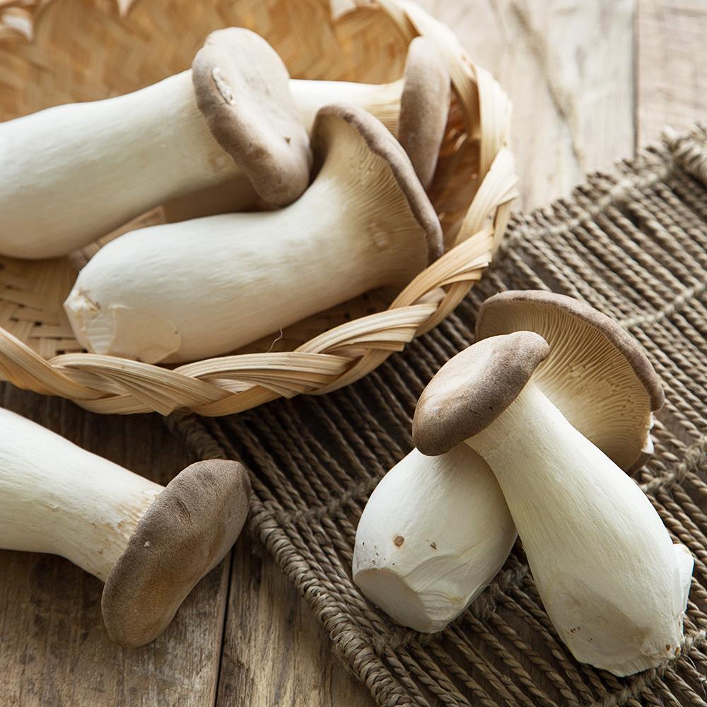 친환경 인증 국내산 뿌리손질된 새송이버섯, 600g, 1팩