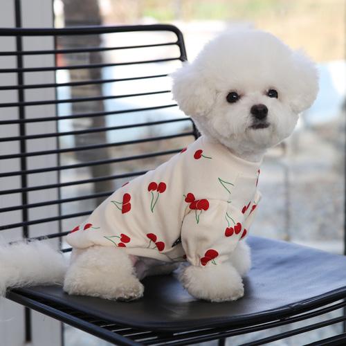 도그토리 체리퍼프 강아지 티셔츠, 아이보리